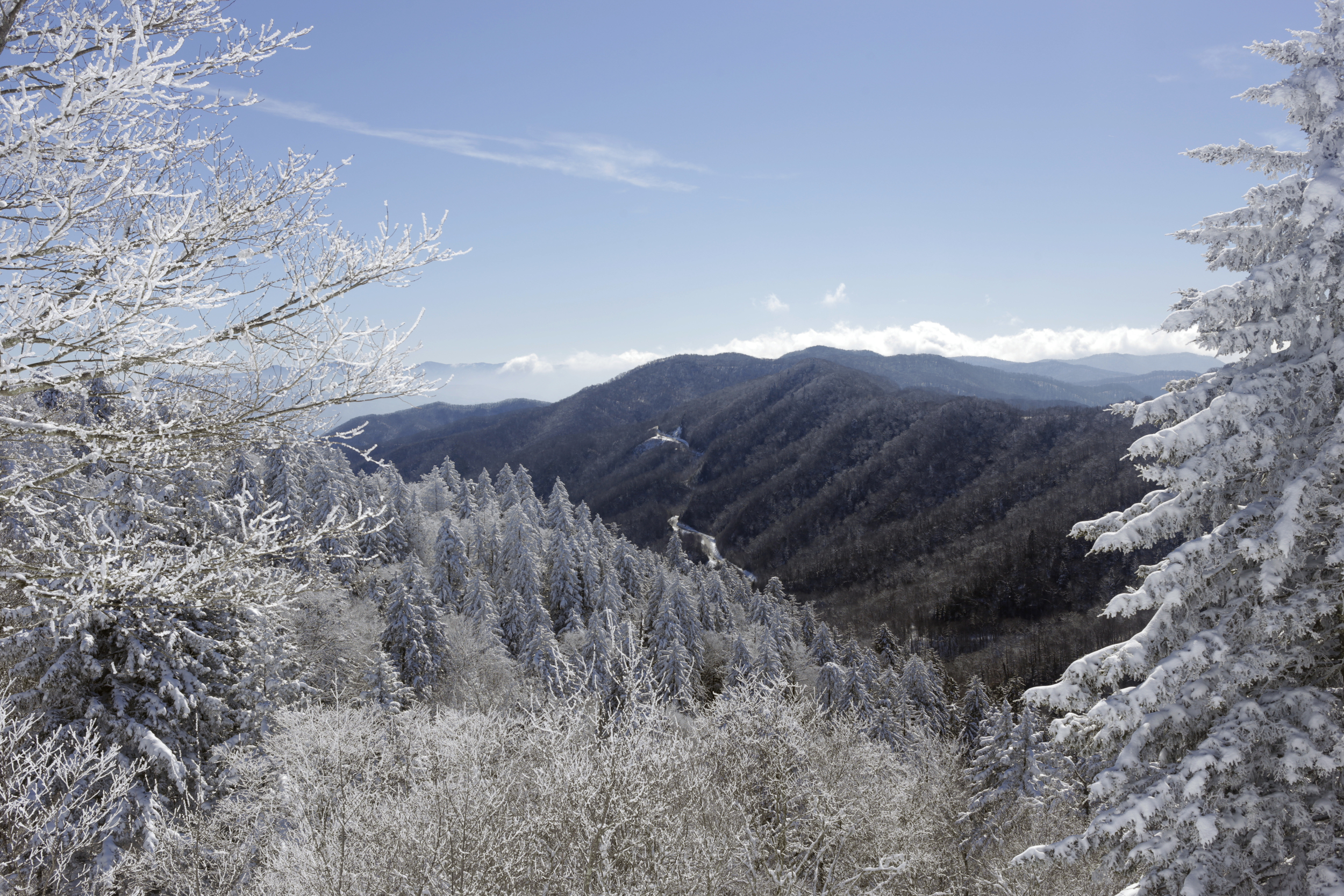 Valley perf landscape.jpg