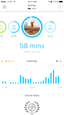 Whistle Activity for Nora - likes those cool evenings! - Rent29.com
