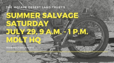 MDLT Summer Salvage, 2017 - shared by Rent29.com