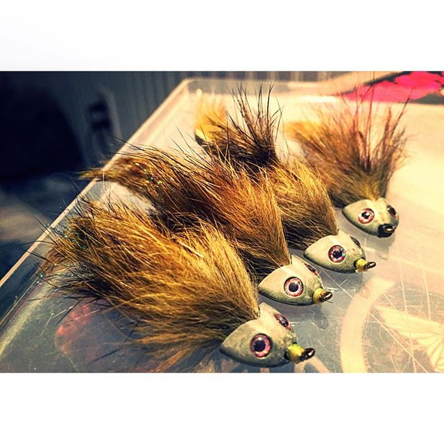 Simple and deadly #flytying #fishwhistle