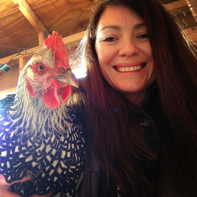 Artemis was a beautiful hen.
