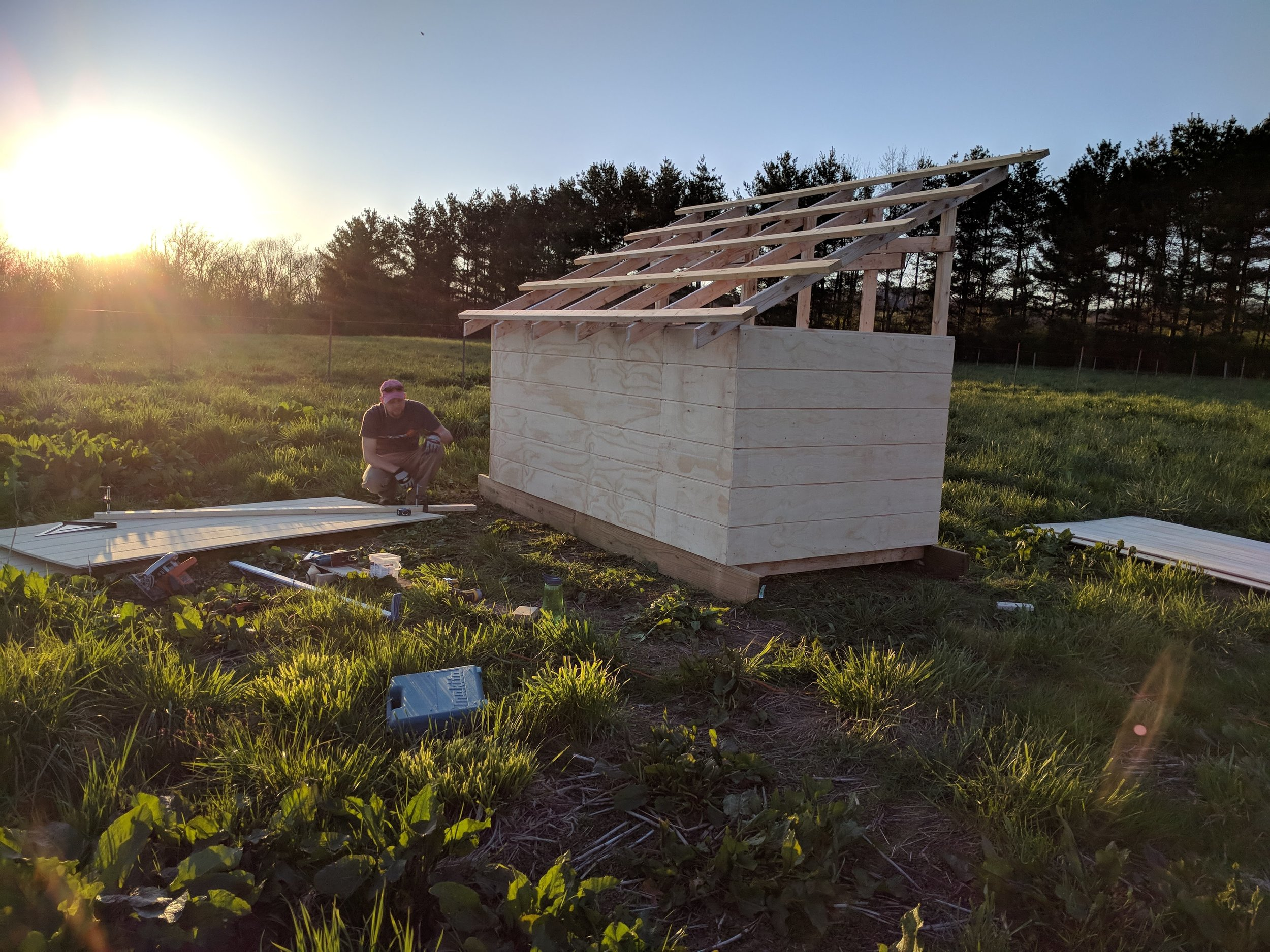 The goat shed being worked on by my handsome husband.