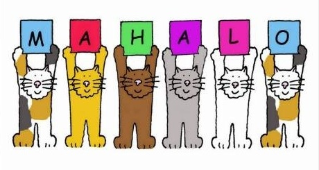 Mahalo for remembering the Kitty Cats during this Christmas with your wonderful donations. May 2019 bring many blessings. Aloha