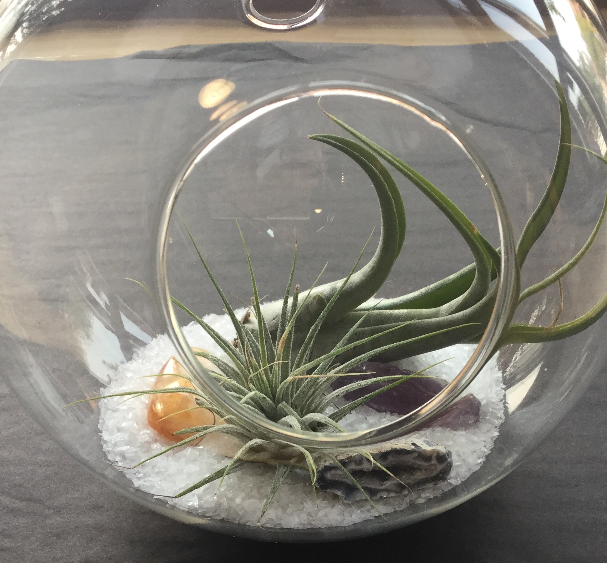 Hanging air plant terrarium with sand and gemstones. $40 with tax