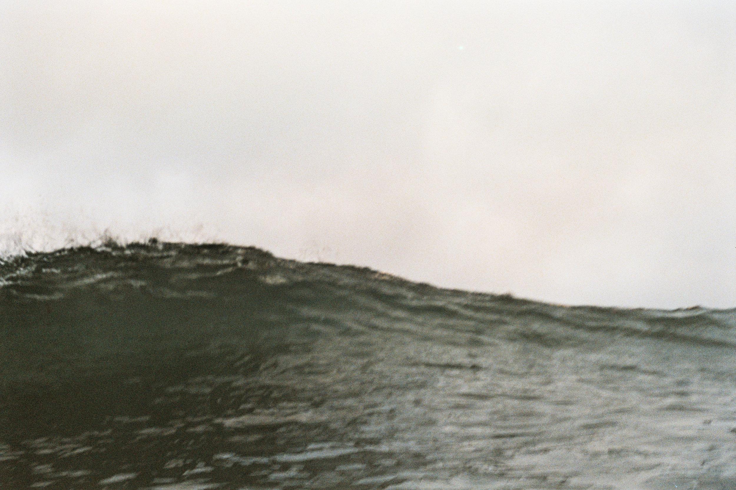 DTRTS Surfy 2016AA028.jpg