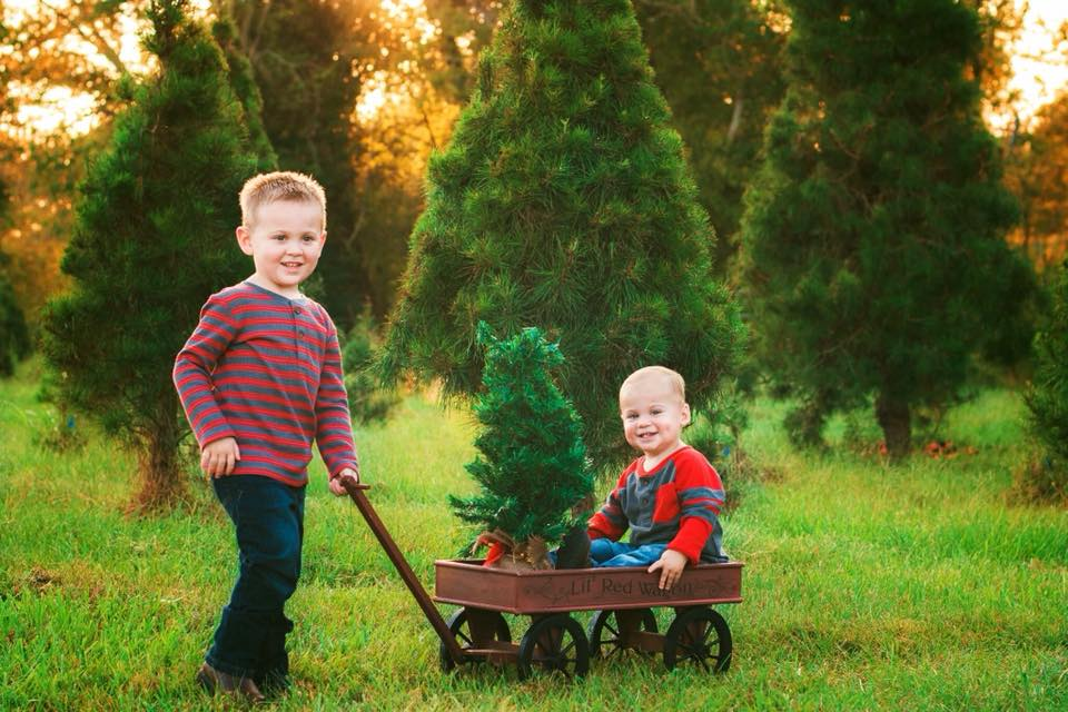 Use a fake baby tree for photos. We won't tell!
