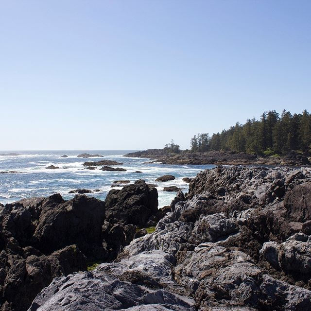 Project Site, Ucluelet, 2019