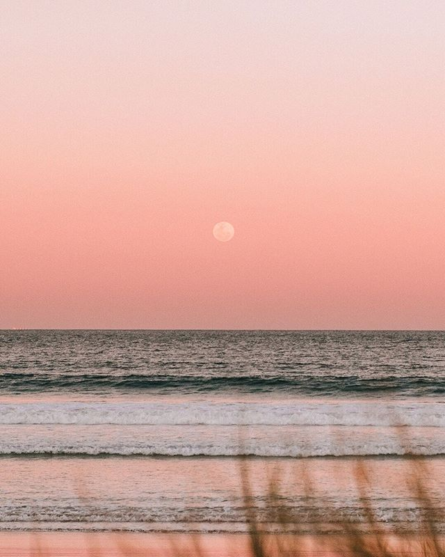 Who caught the full moon rising last night? It appeared right on sunset and the whole sky was lit up pink... one of the prettiest I've seen 😍