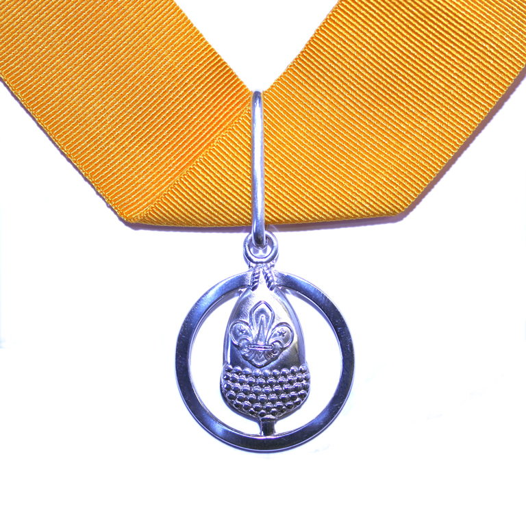 Silver Acorn - The nominee should have a minimum of 20 years of specially distinguished service.
