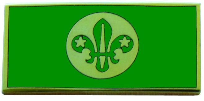 chief-scouts-personal-award-pin.jpg