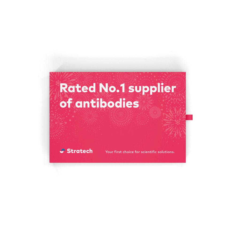 Stratech-Brand-Website.jpg
