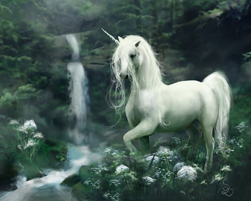 Unicorn30.jpg