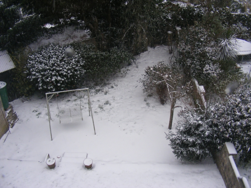 Back garden, taken from bedroom window