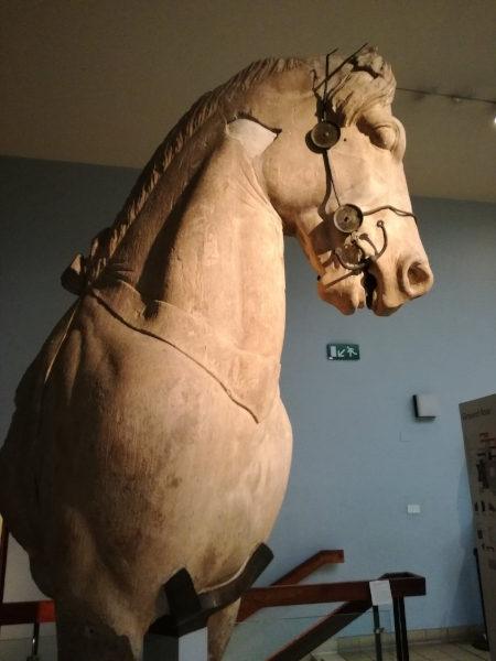 Chariot horse