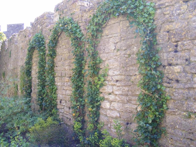 Chapel wall with greenery