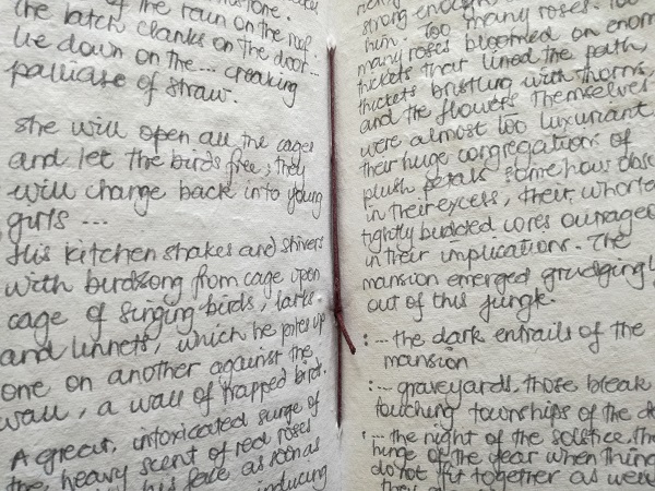 Snippets of 'genius' writing from one of my notebooks