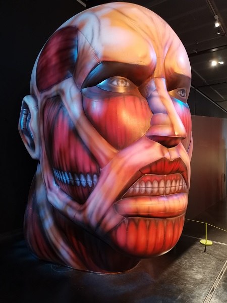 Head of a titan from 'Attack on Titan'