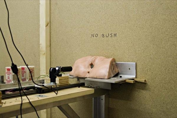 No Bush, 2006
