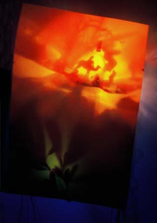 bleedingorchid_3.jpg