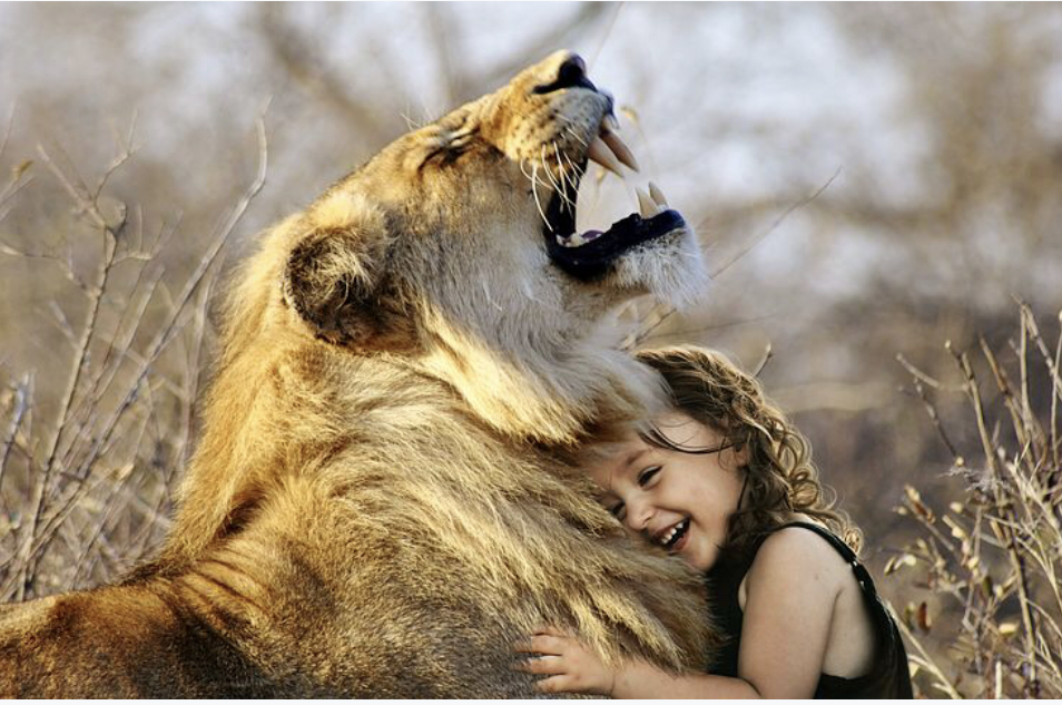 Now I don't know who put this little girl in front of this lion like that, but they set this girl up. But, guess what? This needs to be you. Hug a lion. No, don't do it for real, but really, hug a lion. Yes, your head may get bitten off, but that's just a dang excuse. Why didn't you write today? Okay, so you think that's gonna fly with me when this little child put her life in danger to hug a lion? She can now say she's hugged a lion and has lived to tell the story. If she'd let any excuse fly, she couldn't say that, now could she? Hmmm? Hug a lion.  7: KILL WRITER'S BLOCK