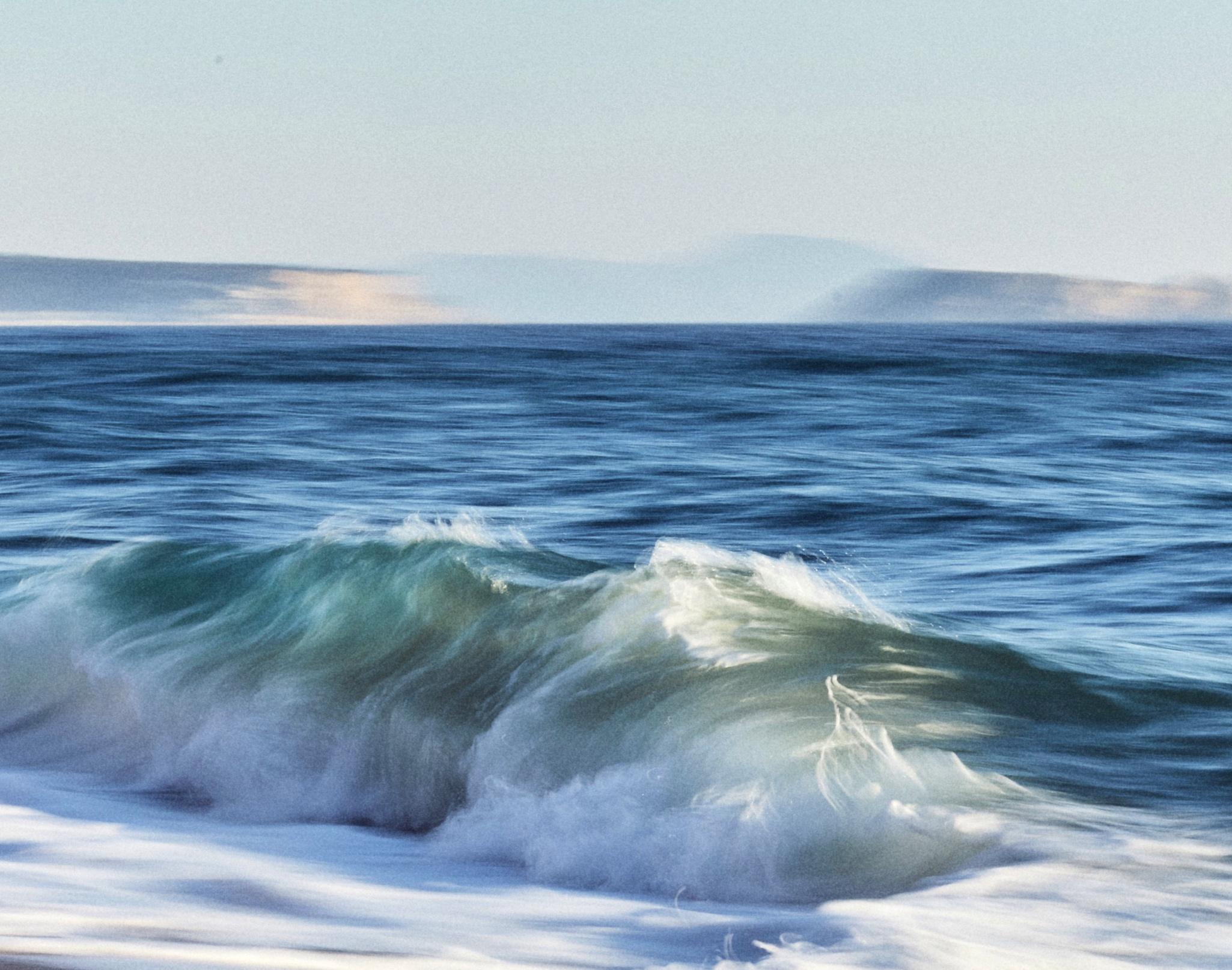 Blaus+del+Mediterrani