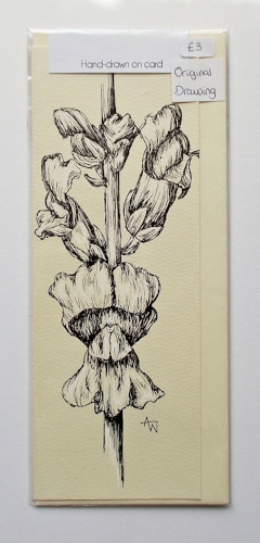 Snap Dragon greetings card - 3inches x 8inches - Black fine-liner directly on to the card