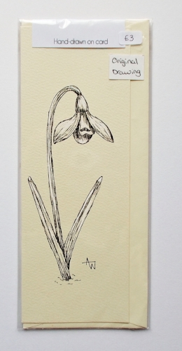 Snowdrop greetings card - 3inches x 8inches - Black fine-liner directly on to the card