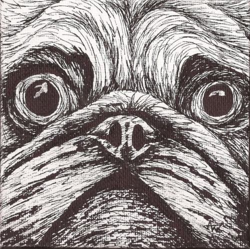Pug board - 10cm x 10cm - Black fineliner