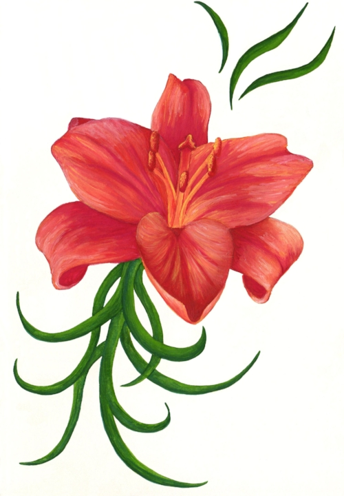 Stylised Lillium painting - watercolour