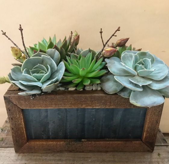 Reclaimed Wood and Metal Planter