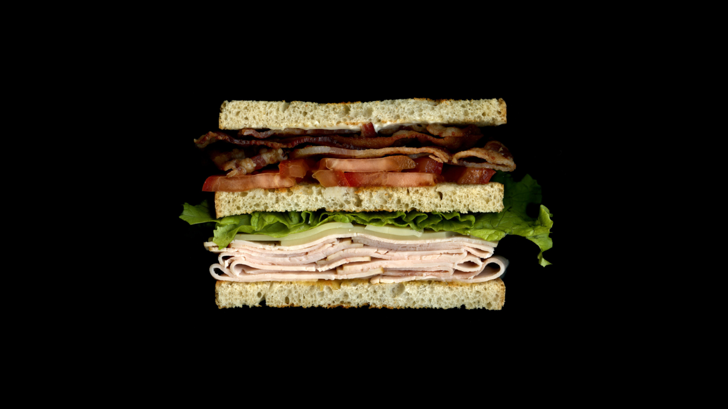 Scanwiches_1.png