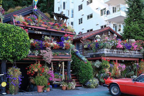 Alki Flower house.jpg