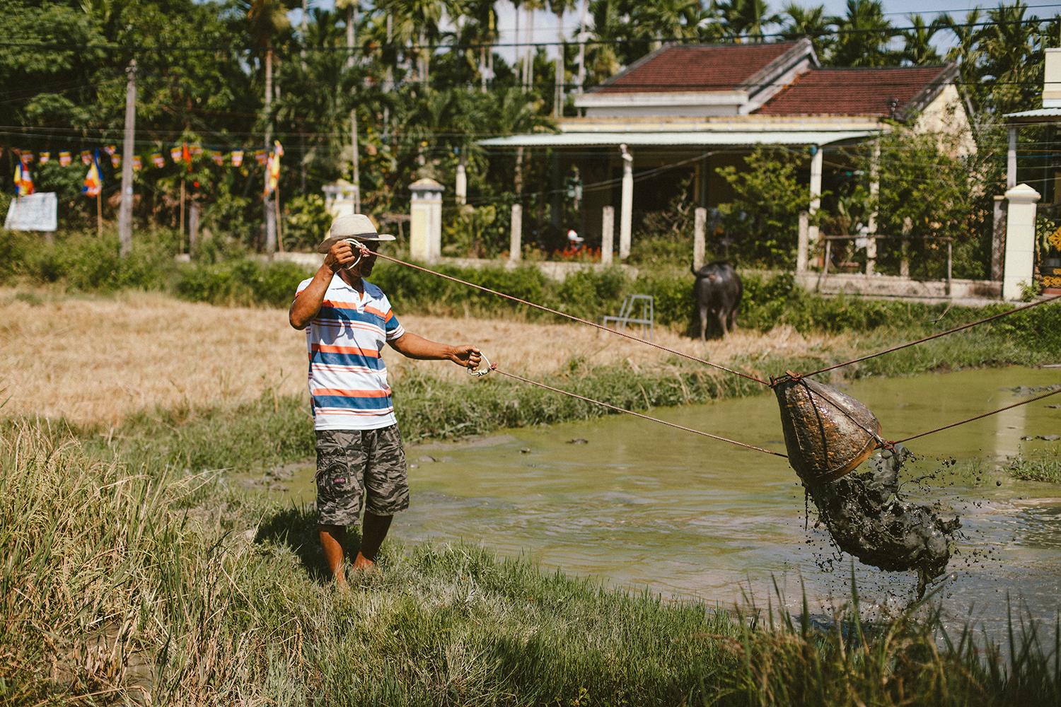 Hoang's brother showing us how to water the rice field
