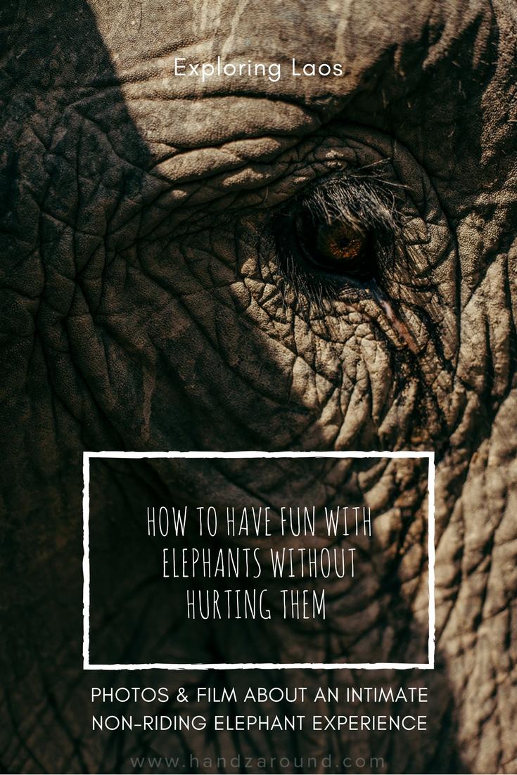 laos elephant experience handzaround