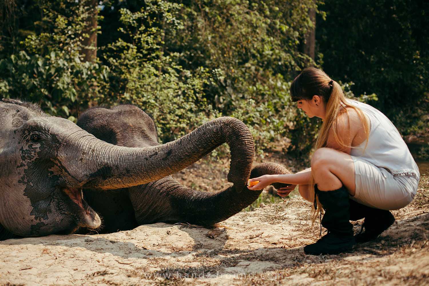 Hanna & elephants at Mandalao Elephant Sanctuary