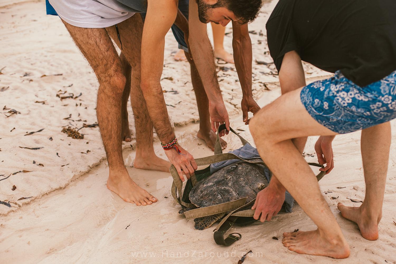 022_Things_To_Do_In_Watamu_HandZaround_Kenya_Coast_Indian_Ocean_Watamu_Treehouse_Turtle_Watch_Crab_Shack.jpg