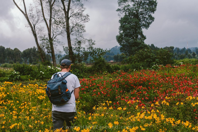 13_What_To_Do_In_Gisenyi_Lake_Kivu_Backpacking_Rwanda_Visiting_Gisenyi_Inzu_Lodge_HandZaround.jpg
