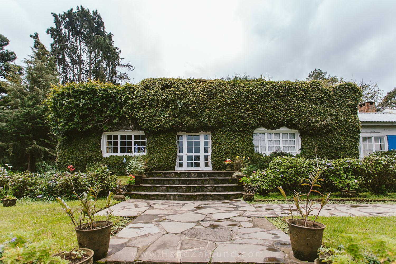 Roz Carr's Cottage House at Imbabazi