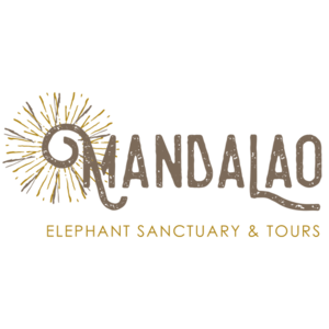 Manda+Lao+elephant+sanctuary+Laos+Luang+Prabang+Handzaround.png