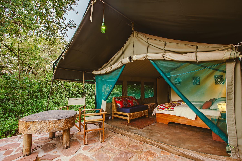 071_HandZaround_Akagera_African_Parks_Rwanda_East_Africa.jpg