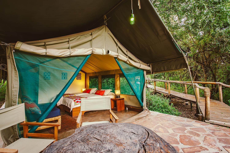 072_HandZaround_Akagera_African_Parks_Rwanda_East_Africa.jpg
