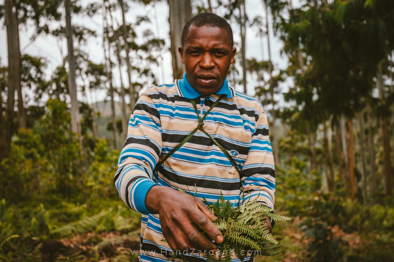 33_Nyungwe_Forest_Rwanda_HandZaround_What_Do_Where_To_Stay_Prices_Chimpanzee.jpg