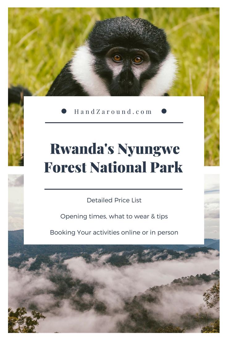 Rwanda's Nyungwe Forest National Park - Accommodation, Activities, Prices   HandZaround.com.png