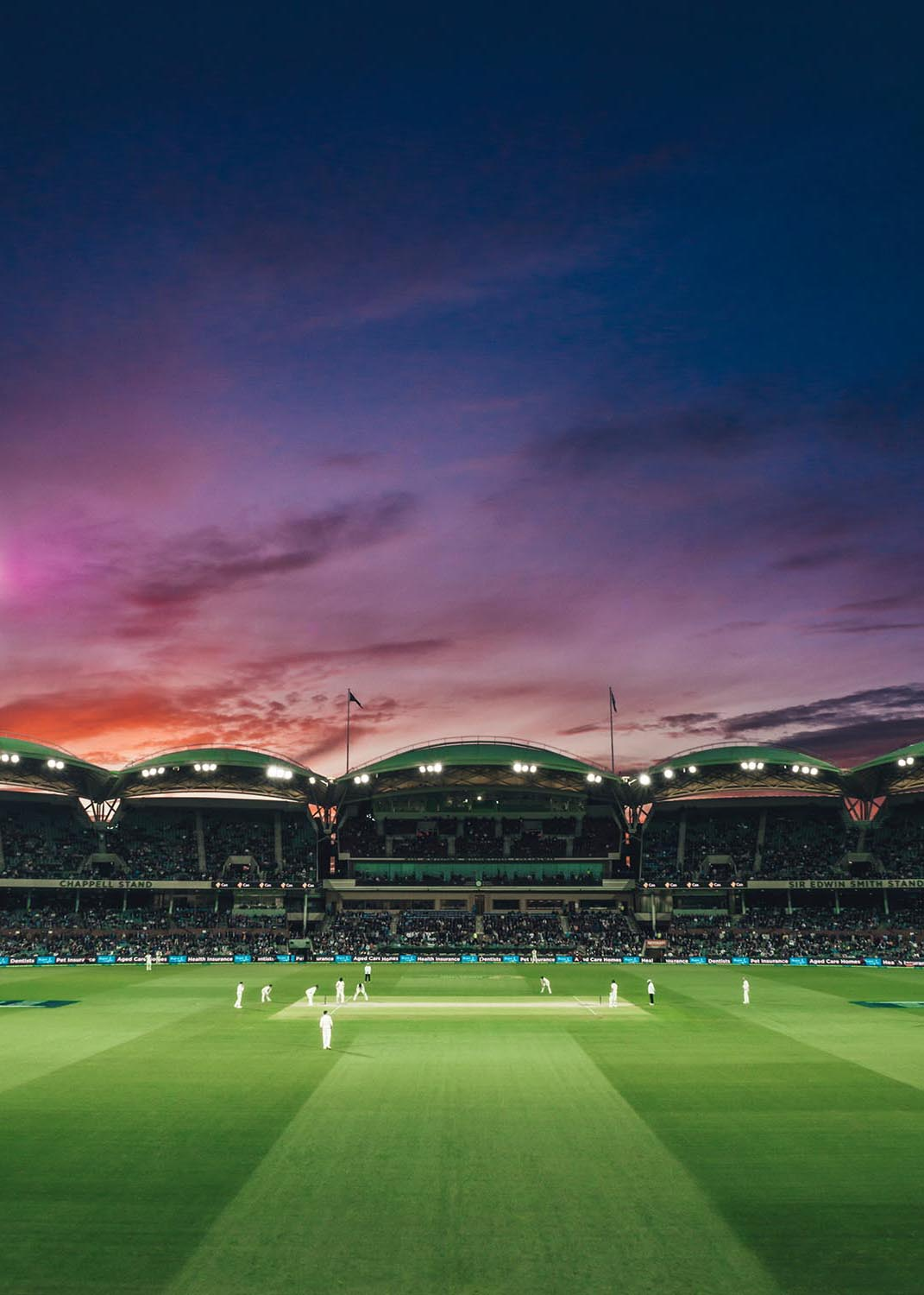 Cricket match. Image by Marcus Wallis.