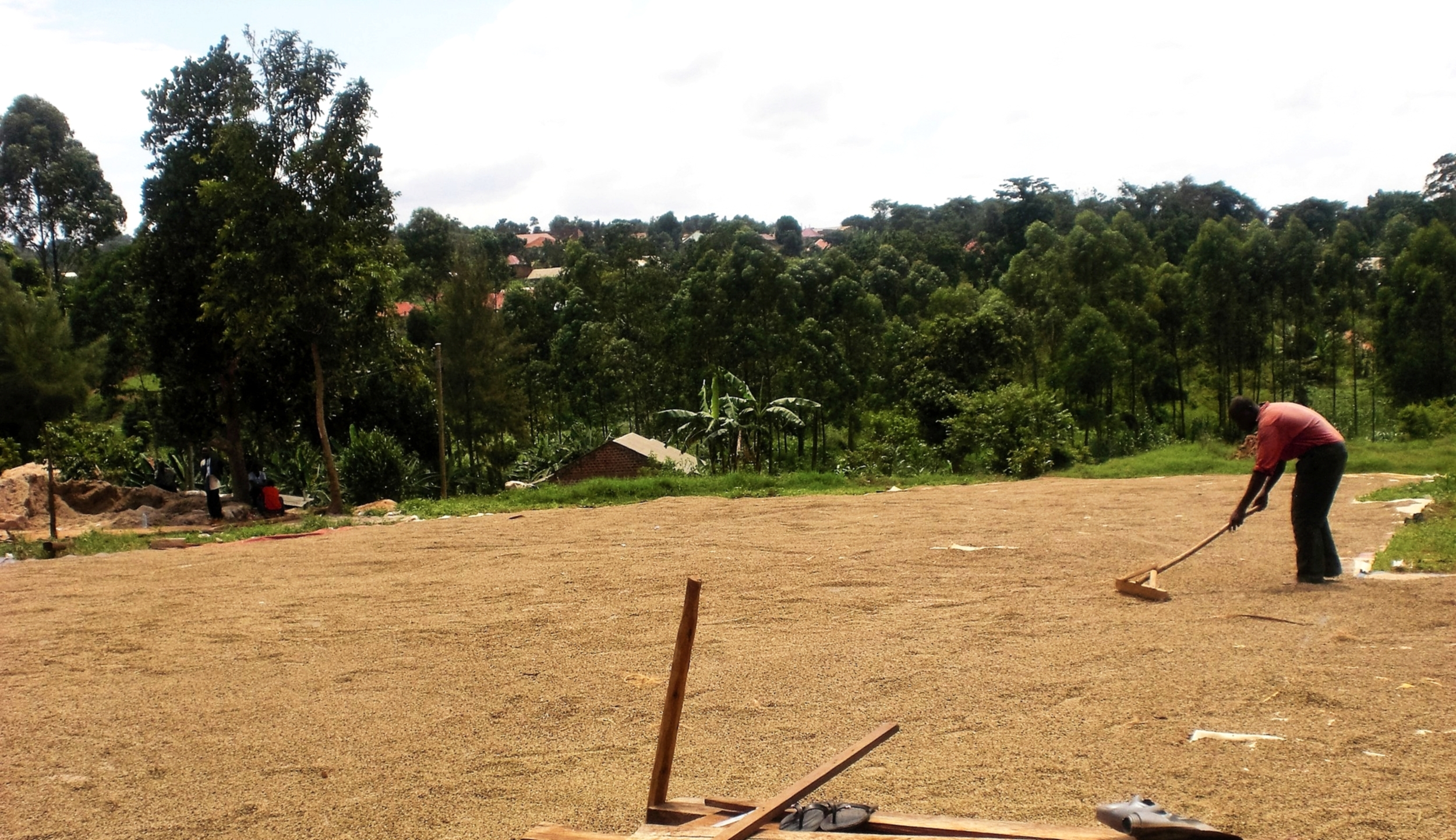 We strive to provide the best single origin coffee directly from our farming co-ops in Uganda. -
