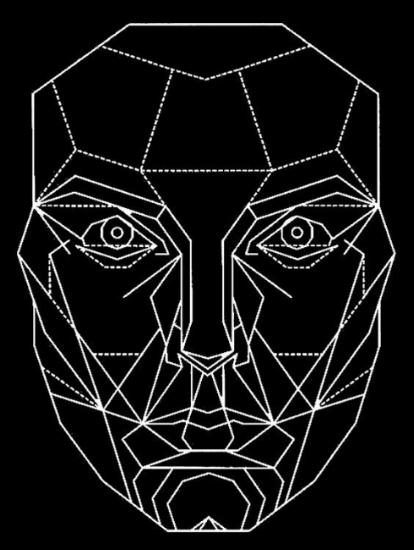 Dr. Marquardt's Golden Ratio Mask, his representation of the mathematically ideal facial archetype. Adapted from  J Clin Orthod  2002.