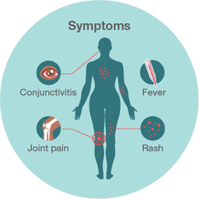 Photo Source: CDC <https://www.cdc.gov/zika/about/overview.html>