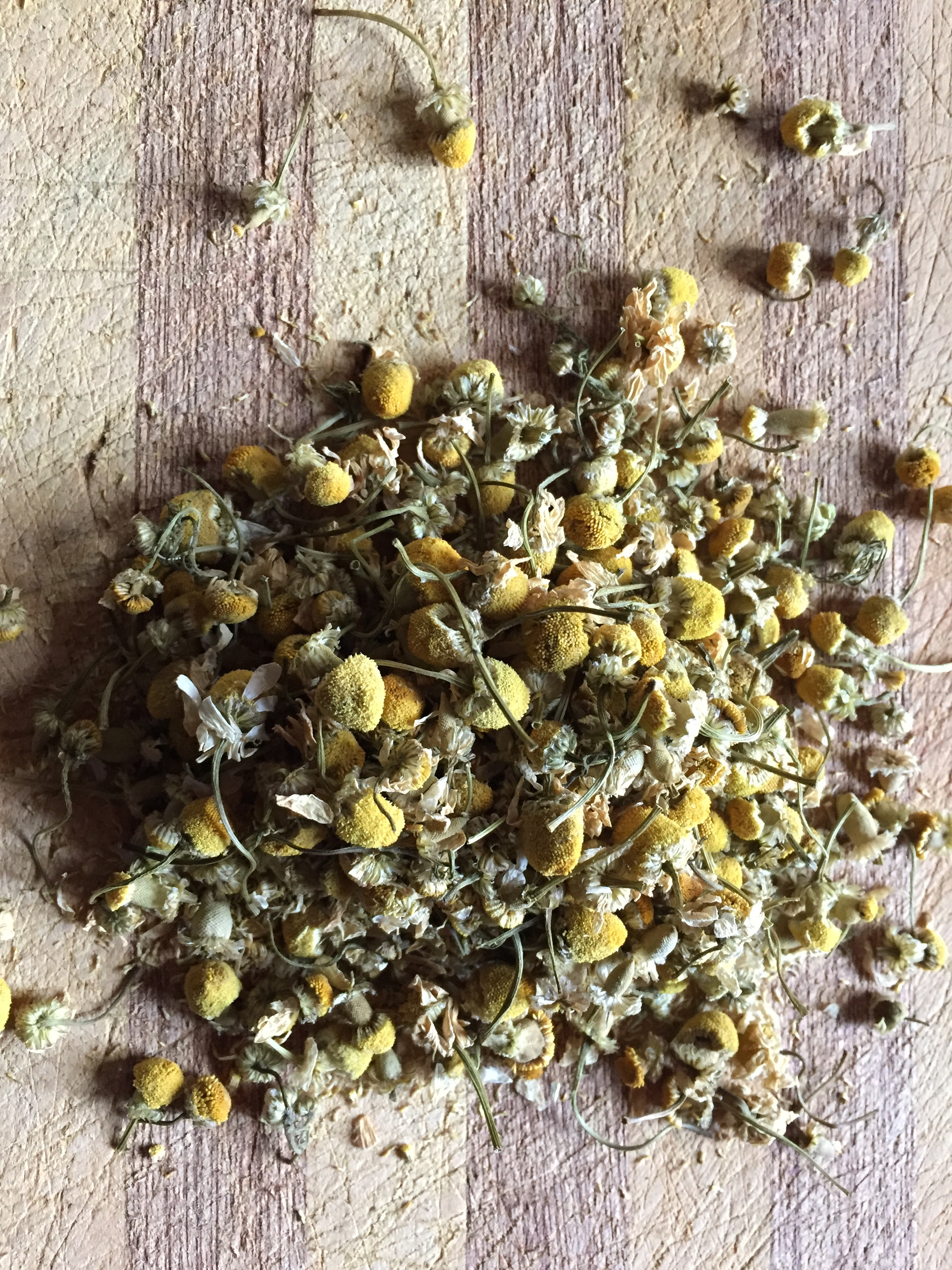 Chamomile - A super food, chamomile is full of phytochemicals, the biologically active compounds found in plants, beneficial to human health. It also contains 28 different terpenoids and 36 flavonoids - the scent and taste where medicine is found.Chamomile nearly mimics CBD, with the added bonus of being calming and uplifting for anxiety and depression.Any remedy made with cannabis can be made with chamomile.See the Chamomile page for more beneficial information.