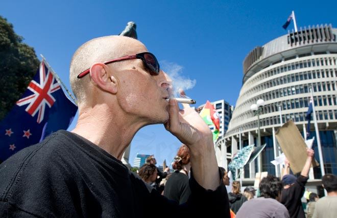 protestor smoking outside parliament in new Zealand photo: web