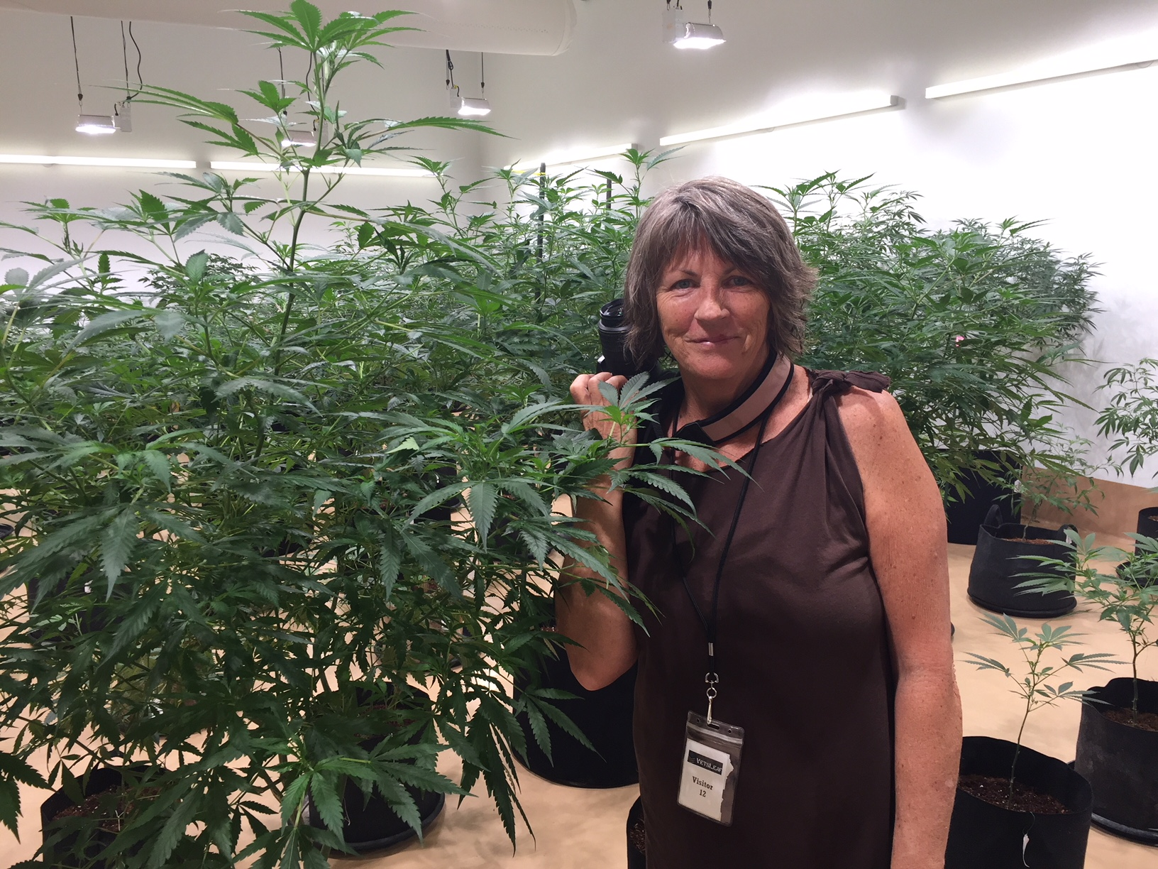 Who's Who… - in the Cannabis Industry.Follow this LINK.